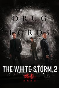 Nonton Film The White Storm 2: Drug Lords (2019) Subtitle Indonesia Streaming Movie Download