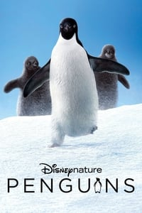 Nonton Film Penguins (2019) Subtitle Indonesia Streaming Movie Download