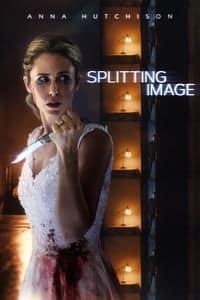 Splitting Image (2017)