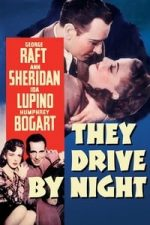 Nonton Film They Drive by Night (1940) Subtitle Indonesia Streaming Movie Download