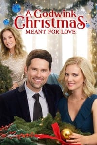 A Godwink Christmas: Meant for Love (2019)