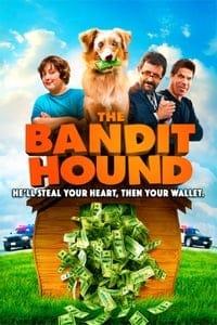 The Bandit Hound (2016)