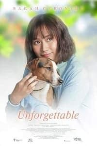 Unforgettable (2019)