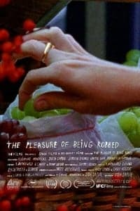 The Pleasure of Being Robbed (2008)
