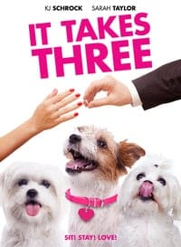 It Takes Three (2019)