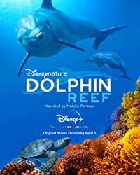 Nonton Film Dolphin Reef (2018) Subtitle Indonesia Streaming Movie Download