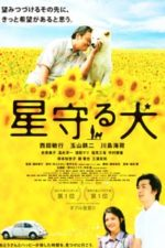 Nonton Film Star Watching Dog (2011) Subtitle Indonesia Streaming Movie Download
