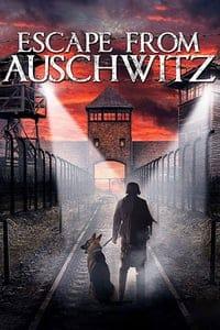Escape from Auschwitz (2020)