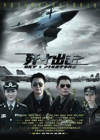 Sky Fighters (2011)
