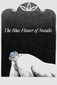 The Blue Flower of Novalis (2018)