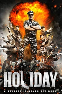 Holiday: A Soldier is Never Off Duty (2014)