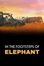 Nonton Film In the Footsteps of Elephant (2020) Subtitle Indonesia Streaming Movie Download