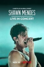 Nonton Film Shawn Mendes: Live in Concert (2020) Subtitle Indonesia Streaming Movie Download