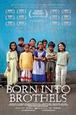 Nonton Film Born Into Brothels: Calcutta's Red Light Kids (2004) Subtitle Indonesia Streaming Movie Download