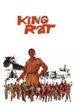 Nonton Film King Rat (1965) Subtitle Indonesia Streaming Movie Download