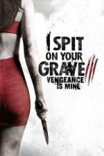 Nonton Film I Spit on Your Grave 3: Vengeance Is Mine (2015) Subtitle Indonesia Streaming Movie Download