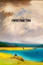 Nonton Film The Wild Pear Tree (2018) Subtitle Indonesia Streaming Movie Download