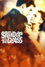 Nonton Film Splendor in the Grass (1961) Subtitle Indonesia Streaming Movie Download