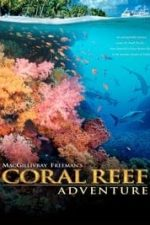 Nonton Film Coral Reef Adventure (2003) Subtitle Indonesia Streaming Movie Download