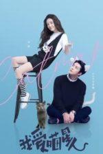 Nonton Film Catman (2021) Subtitle Indonesia Streaming Movie Download