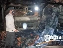 Diduga Akibat Bakar Sampah, Kandang Sapi di Sampang Dilalap Api