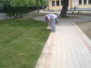 formowanie trawnika 7