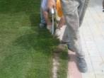 przycinanie trawy z rolki