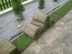 układanie trawy w rolkach