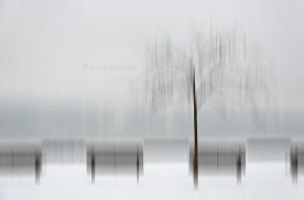 Astratti d'inverno 4