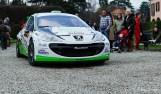 Spataro Andrea / Ceva Claude Peugeot 207