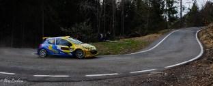Dipalma Giuseppe /COBRA Peugeot 207