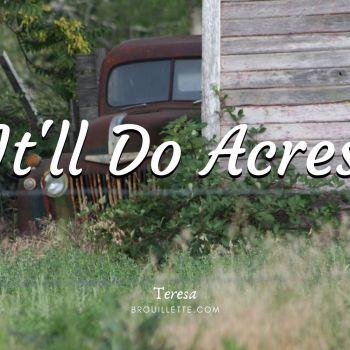 It'll Do Acres