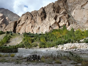 Fertile river valley on way to Tsomoriri, Ladakh, India