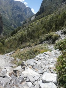 The Valley of Flowers track looking back towards the waterfall and Hemkund track, Himalayan India