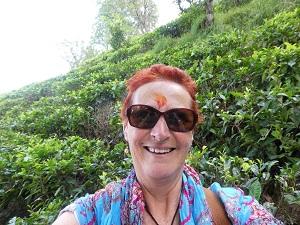 Visiting the tea plantations near Kausani, Himalayan India