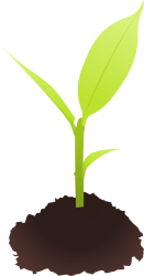 cyberscooty-small_plant-800px.png