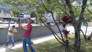 Prefeitura mantém equipes de conservação em praças do município