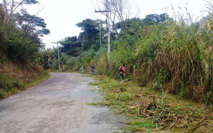 Limpeza de margem de estrada em Sebastiana