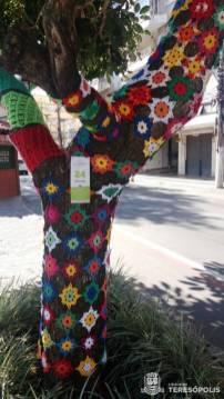 A criatividade e o colorido do crochê revestem as árvores do canteiro central da Reta