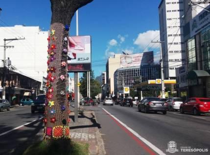 Cada grupo adotou uma árvore para deixar a sua criatividade em crochê