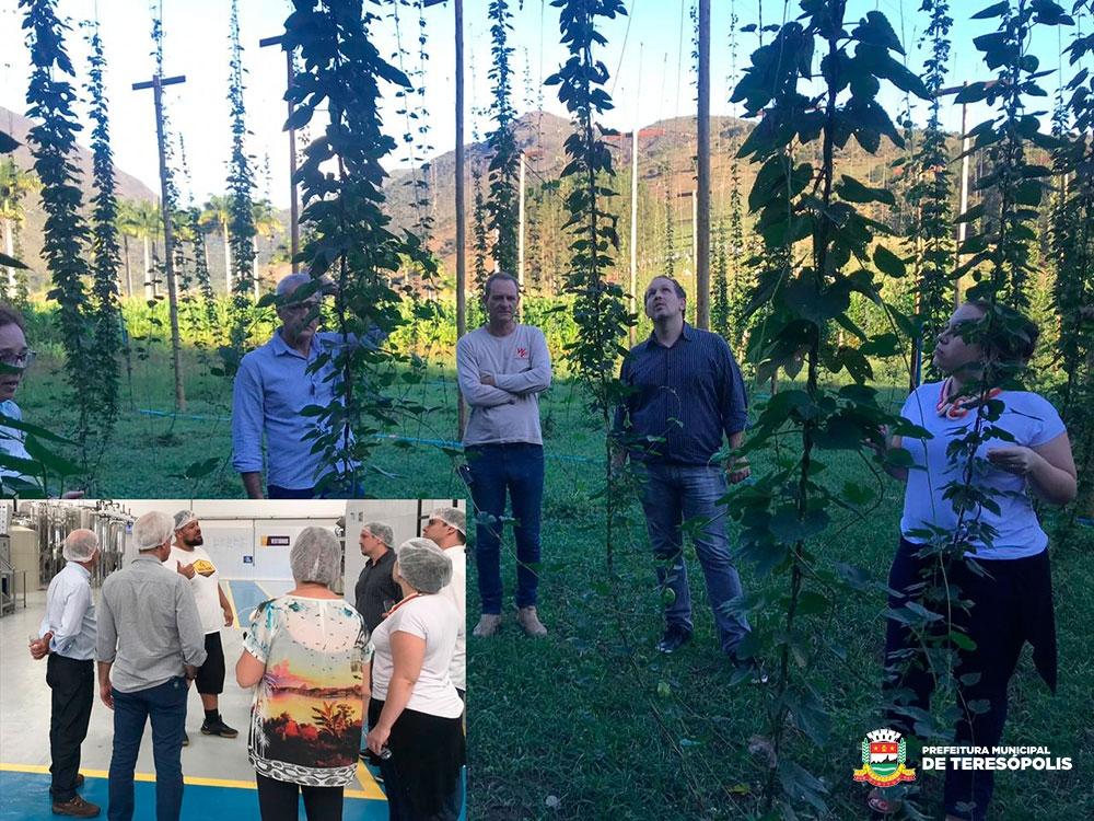 Desenvolvimento Econômico do Estado busca informação sobre indústria cervejeira artesanal de Teresópolis