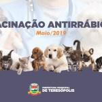 Beira Linha e Santa Cecília são os próximos bairros a receber a vacinação de cães e gatos contra raiva animal