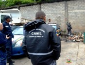 Agentes que trabalham em operações com cães acompanham simulação de busca