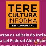 Teresópolis publica editais de prêmios e projetos culturais para interessados se candidatarem a receber recursos da Lei Aldir Blanc