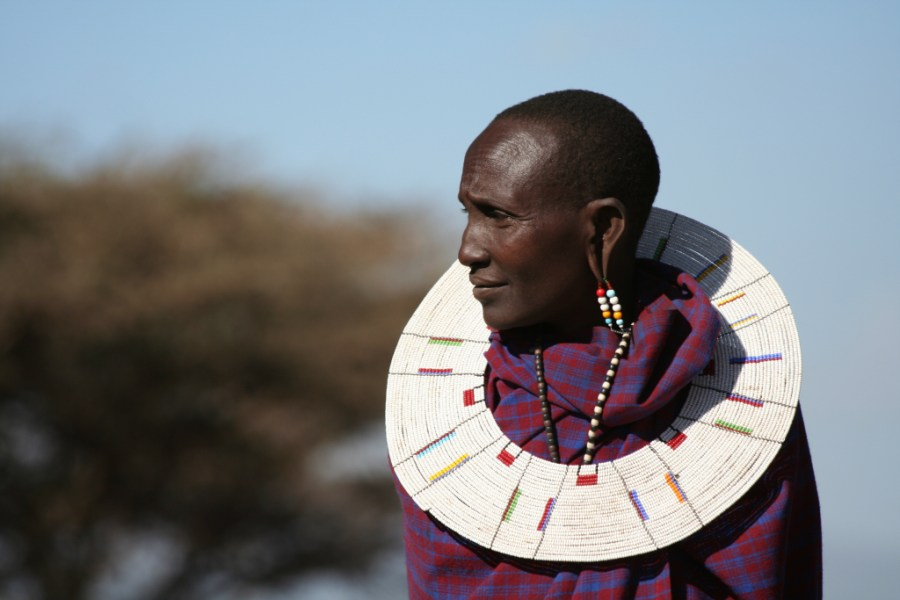 a Masai woman, wearing long beaded earrings and a needled collar
