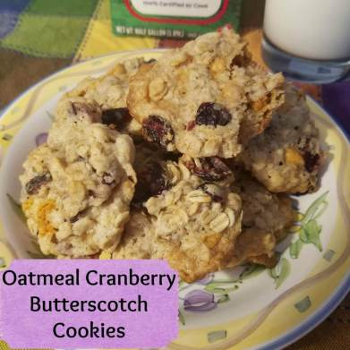 oatmeal cranberry butterscotch cookies