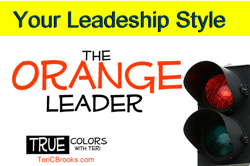 The Orange Leadership Style