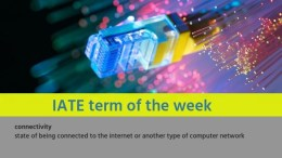IATE Term of the Week: connectivity