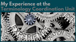 My Experience at the Terminology Coordination Unit