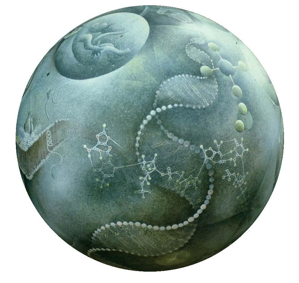 biosphere termesphere online gallery